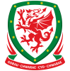 Wales National Team
